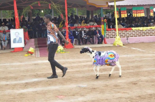 Article : présidentielle 2018: après Biya ce sera «Biya»